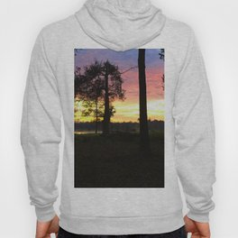Trees at Sunrise Hoody