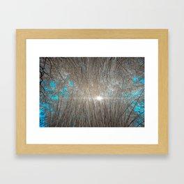 Inside at Canebrake Photograph Framed Art Print