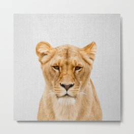 Lioness - Colorful Metal Print