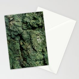 Mossy Birch Bark Stationery Cards