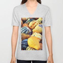 Colorful Gourds Close Up Unisex V-Neck