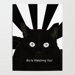 Bo Is Watching You! Poster