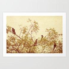 birds in trees Art Print