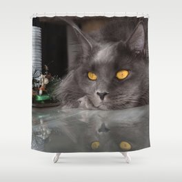Photos Maine Coon Cats New year gray Animals Stari Shower Curtain