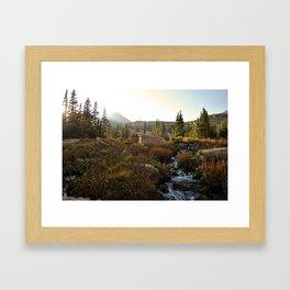 Lion Lake Framed Art Print