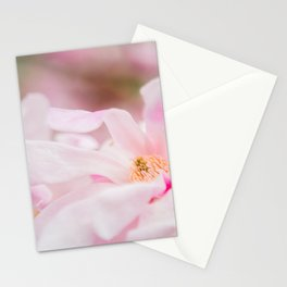 Magnolia In Blush Stationery Cards