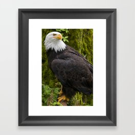Catch me in Ketchikan  Framed Art Print