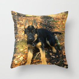 A beautiful German Shepherd in the forest Throw Pillow