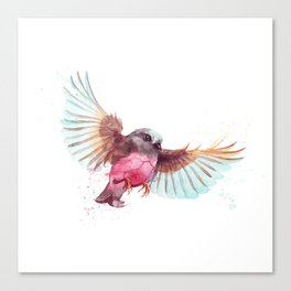 Pink Robin Bird Canvas Print