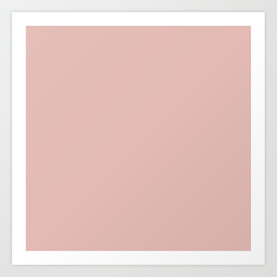 Solid Color Rose Gold Pink by roneric