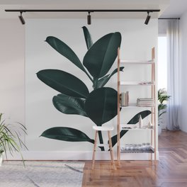 Ficus Finesse #1 #tropical #decor #art #society6 Wall Mural