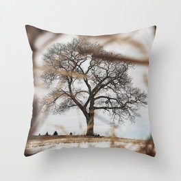 Framed by Reeds Throw Pillow