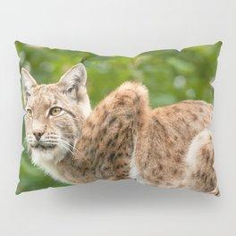 Lynx Pillow Sham