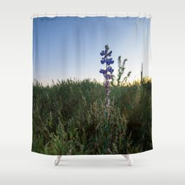 Purple Flowers - Nature Photography Shower Curtain