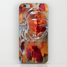 Pumpkin Vase iPhone & iPod Skin