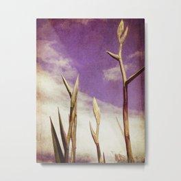 Flax Metal Print
