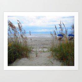 Beach Dreams: Sea Oats by the ocean Art Print