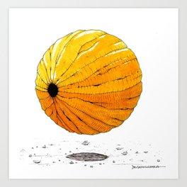 Une graine Art Print