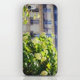 Promenade Plantée iPhone Skin