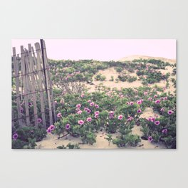 Mornings at the Beach Canvas Print