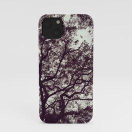 stiffs iPhone Case
