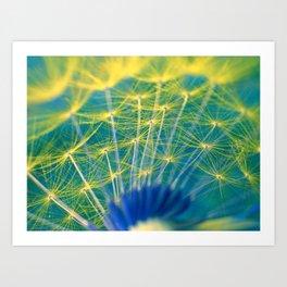 dandelion abstract Art Print