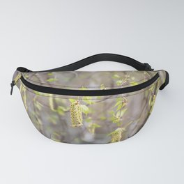 Blossoming birch tree in spring Fanny Pack