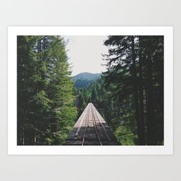 Vance Creek Bridge Art Print