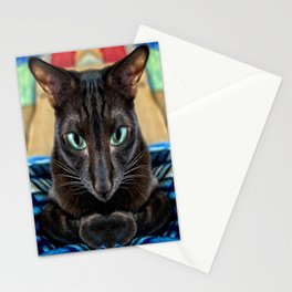 Sake, the Brown Oriental Cat Stationery Cards