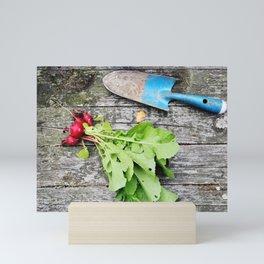 Radishes and garden shovel Mini Art Print