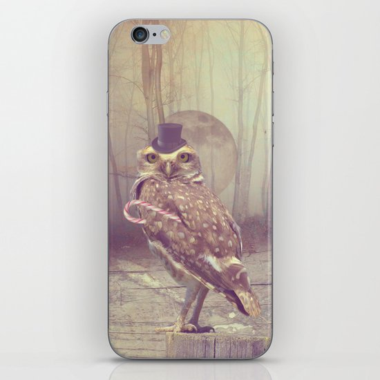 Fairy tale : owl iPhone Skin