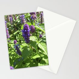 mexican mint bloom IV Stationery Cards