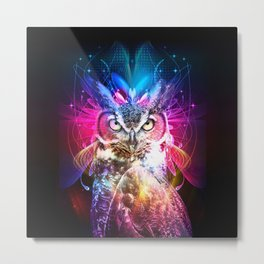 Owl Fighter Metal Print