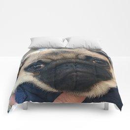 Cutest Pug Ever Comforters