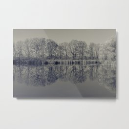 trees are reflected in the lake Metal Print