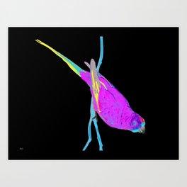 Swift Green Parrot Art Print