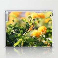 Crown of Splendor Laptop & iPad Skin