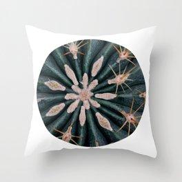 Cactus Plant Close-up Photogrpahy Round Photo Throw Pillow