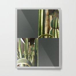 Cactus Garden Blank Q6F0 Metal Print