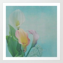 Painterly Calla flowers and leaves Art Print