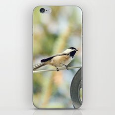 Chick on a line iPhone & iPod Skin