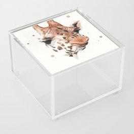 Giraffe Acrylic Box