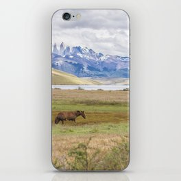 Torres del Paine - Wild Horses iPhone Skin
