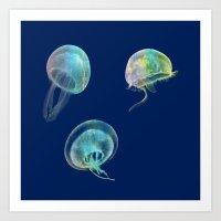 jellyfish Art Prints featuring Jellyfish by Vitta