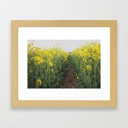 Secret Path Framed Art Print