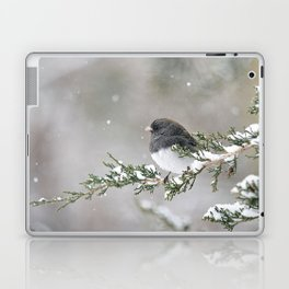 Snowbird on a Snowy Branch (Junco) Laptop & iPad Skin