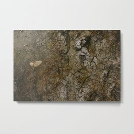 muddy puddle Metal Print