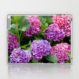 Pink & Purple Flowers Laptop & iPad Skin