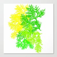 fern Canvas Prints featuring Fern by Sreetama Ray
