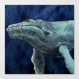 Humpback Whale Illustration Canvas Print